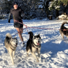 Running with dogs: how everyone can get the most out of it